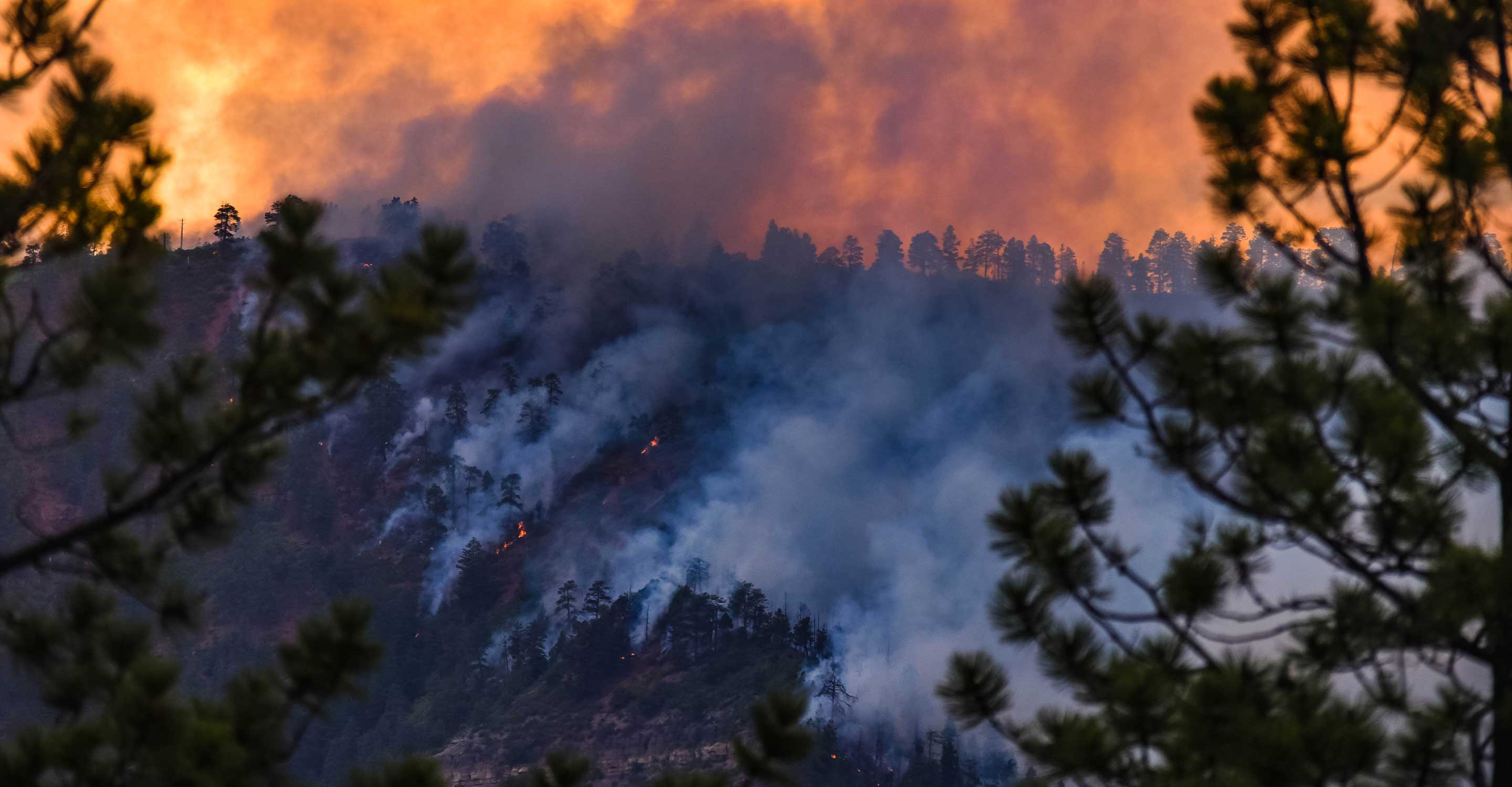 Are wildfires really getting worse?